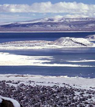 Mono Lake Volcanic Field in winter